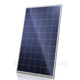 Фото солнечной панели JA Solar JAP6 60-260 /4BB
