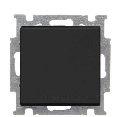 Фото ABB из серии Basic 55 2006/5 UCGL-95-507 черного цвета