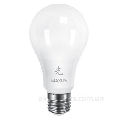Фото лампочки Maxus 461-01-А65